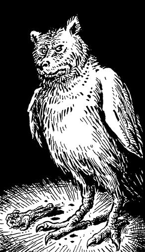 bear owl 72dpi
